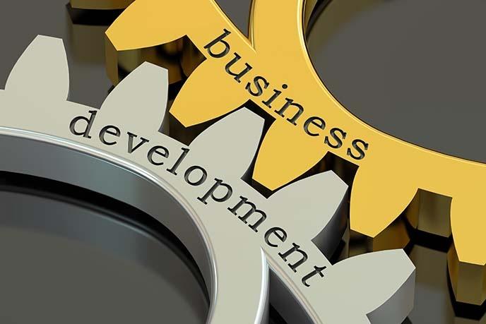 Business Development gears