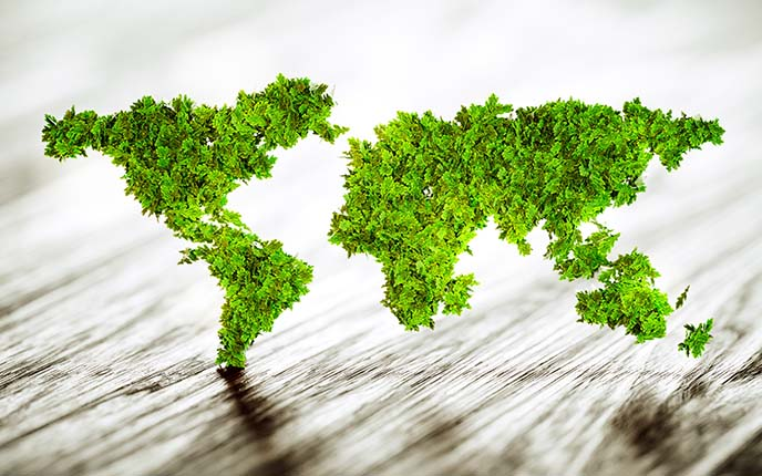 Map of the world in leaves for global sustainable business