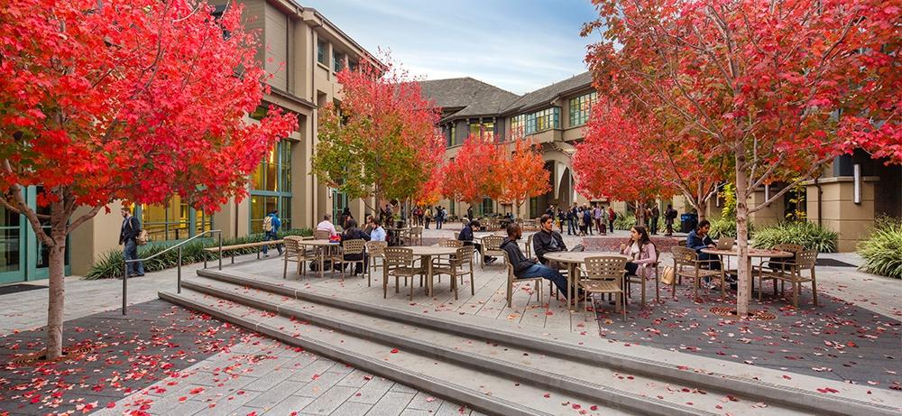 Haas Courtyard_Ed Caldwell-1.jpg
