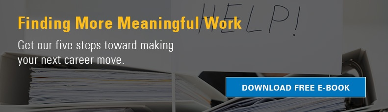 Finding More Meaningful Work ebook