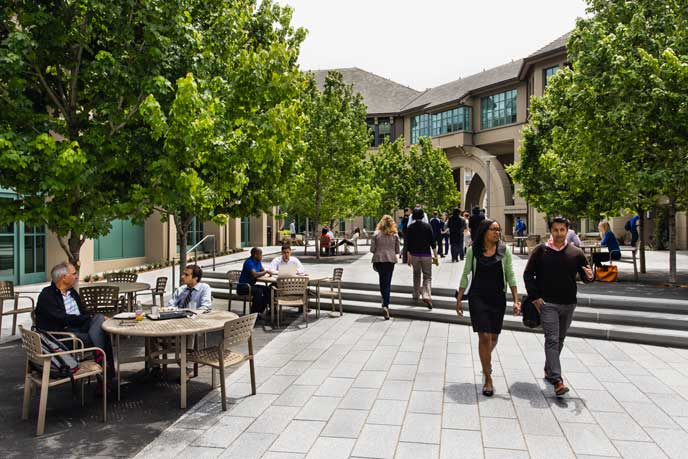 Students from three MBA programs converge in the courtyard at Berkeley-Haas